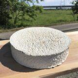 常陸晴(ひたちばれ)-木材香やアーモンド香の様な風味が感じられるセミハードタイプのチーズ