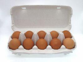 王様のヨード卵 放し飼いボリスブラウンのヨード入り有精卵